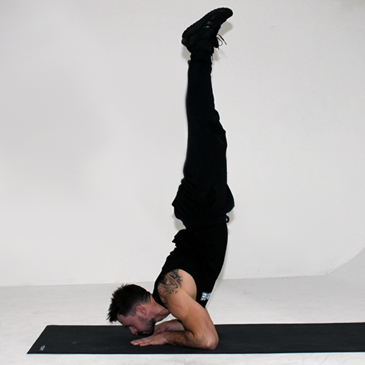 Fitness model performing a tiger bend hold
